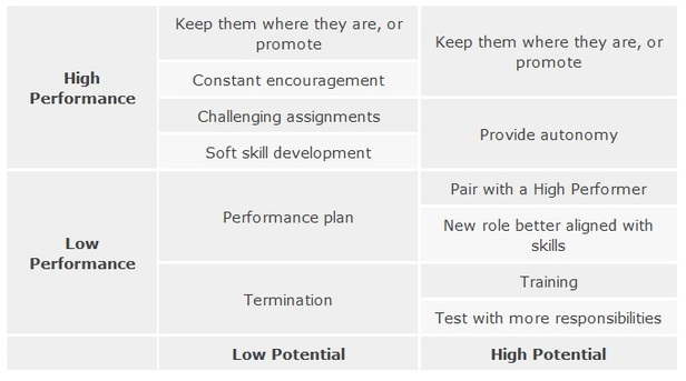 Development Strategies for Potential and Performance